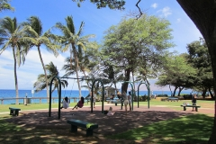 Children swings at Kamaole lll Park