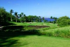 wailea-golf
